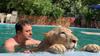 Yavru aslan Leo'ya çocuğu gibi bakıyor
