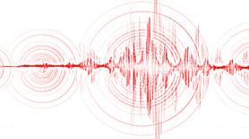 Marmara'da endişelendiren deprem