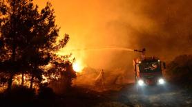 Gelibolu Yarımadası'nda yangın