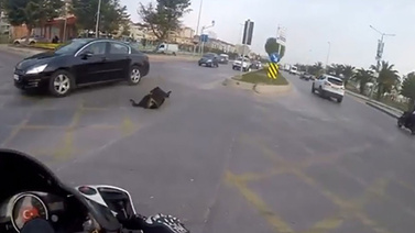 Köpeğe çarptı, öylece çekip gitti