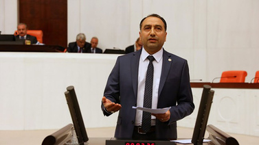 HDP'den 'kaçak zeytin' iddiası!