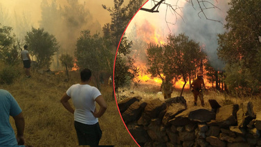 Bodrum ve Milas'ta yangın!