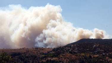 Muğla ve İzmir'de peş peşe orman yangınları