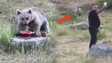 Piknikçilere sürpriz misafir