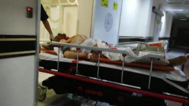 Erzurum'da ayı saldırdı: 1 ölü, 2 yaralı