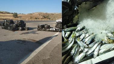 Yolcu otobüsünün bagajından 1,5 ton balık çıktı!