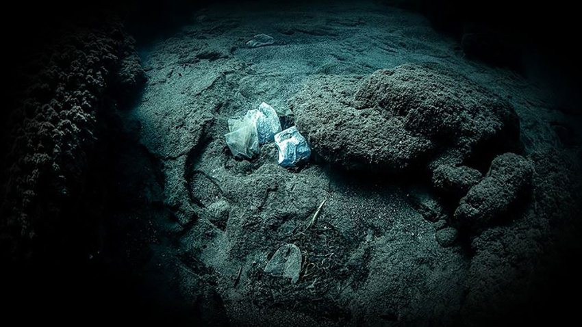 Plastik çöpler dünyanın dibine kadar ulaştı!