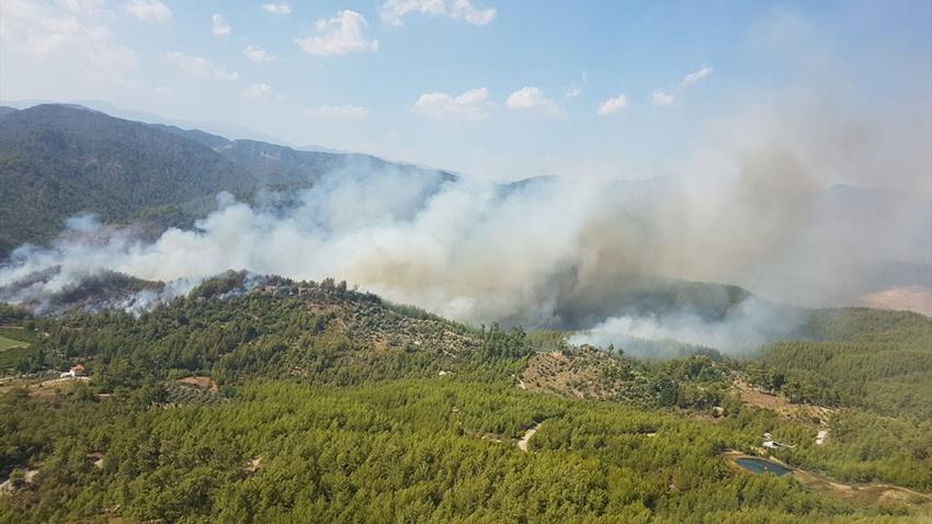 Kartal'da orman yangını!