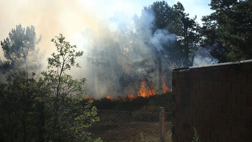 Gebze'deki yangın, fabrikalara sıçradı