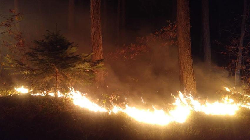 Çanakkale'de yangın!.. 15 dönümlük alanda etkili oldu!