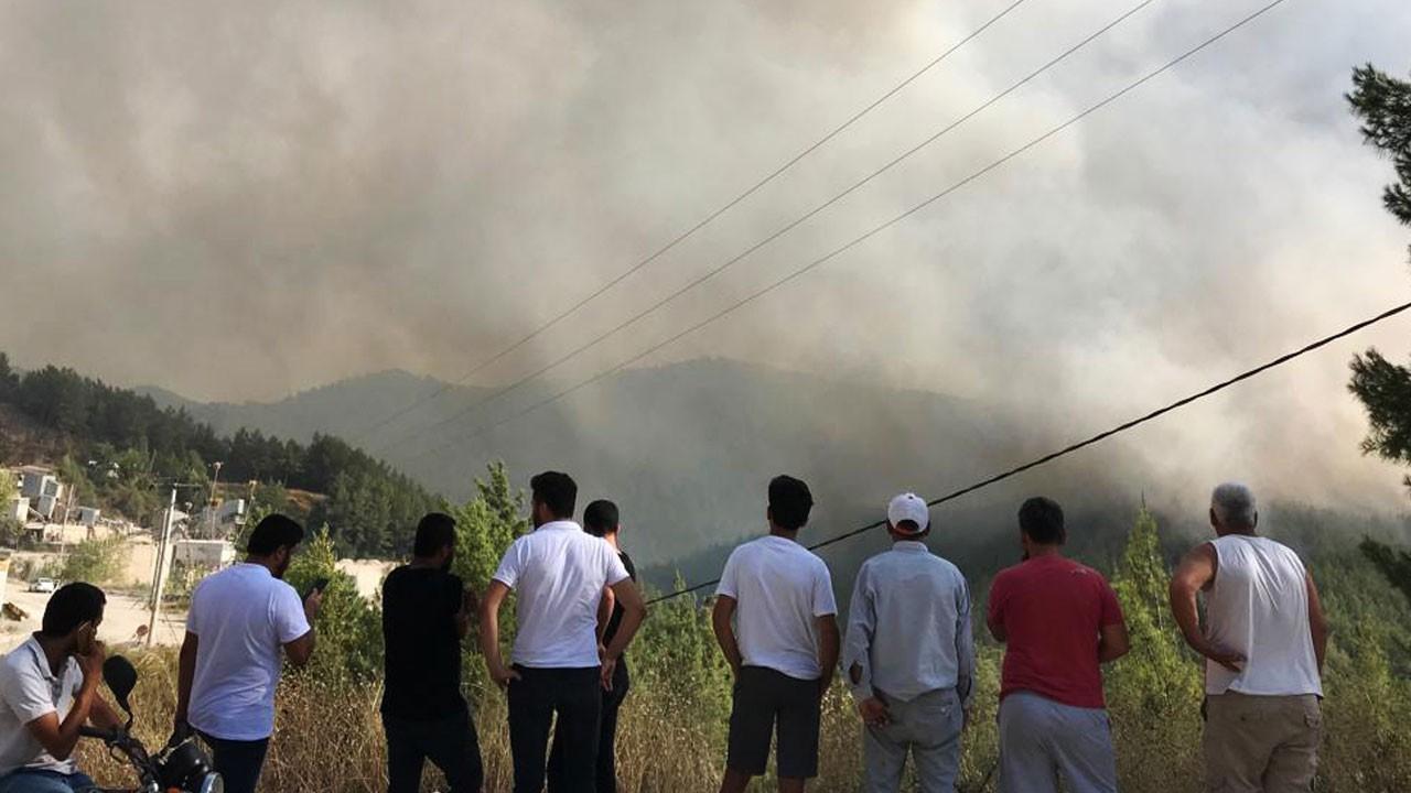 Muğla'da Orman yangını! Alevler yerleşim yerine doğru ilerliyor