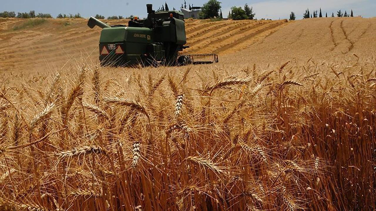 Türkiye tarımda uçuyor mu, çöküyor mu?