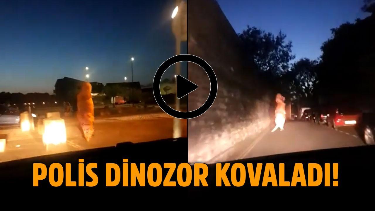 Polisler sokakta dinozor kovaladı