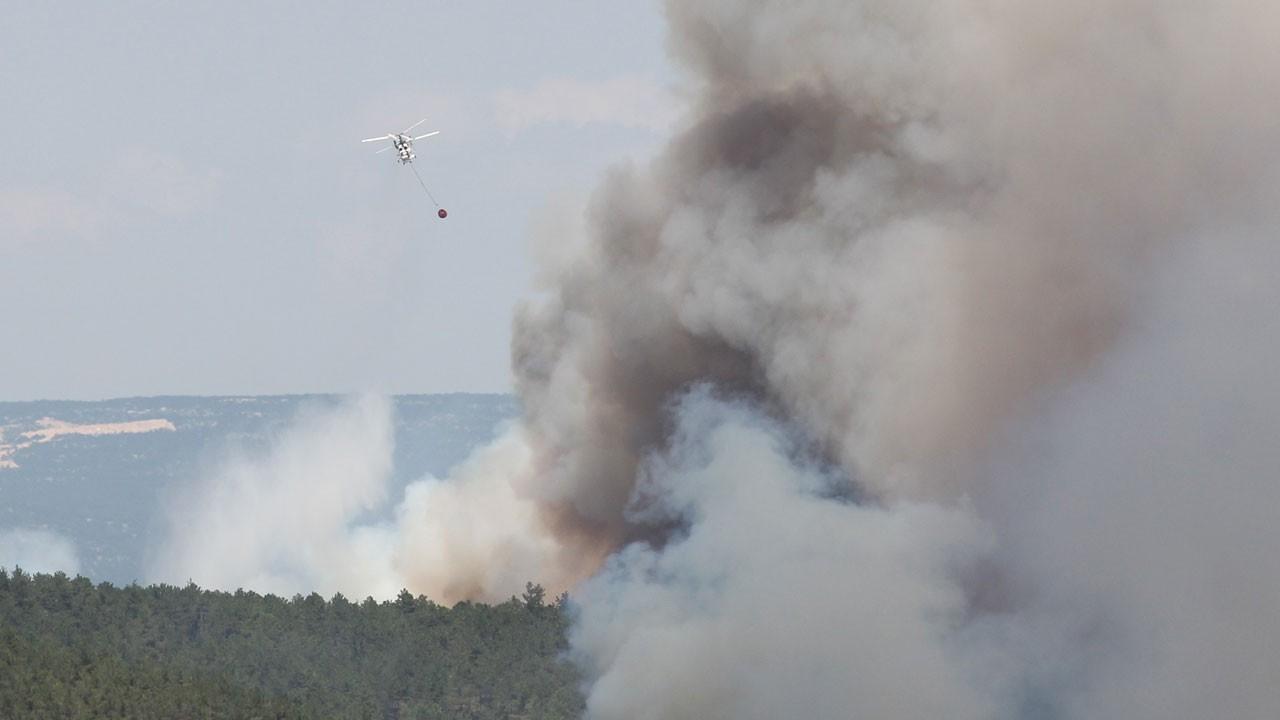 Bursa'da orman yangını: 9 noktada birden başladı!