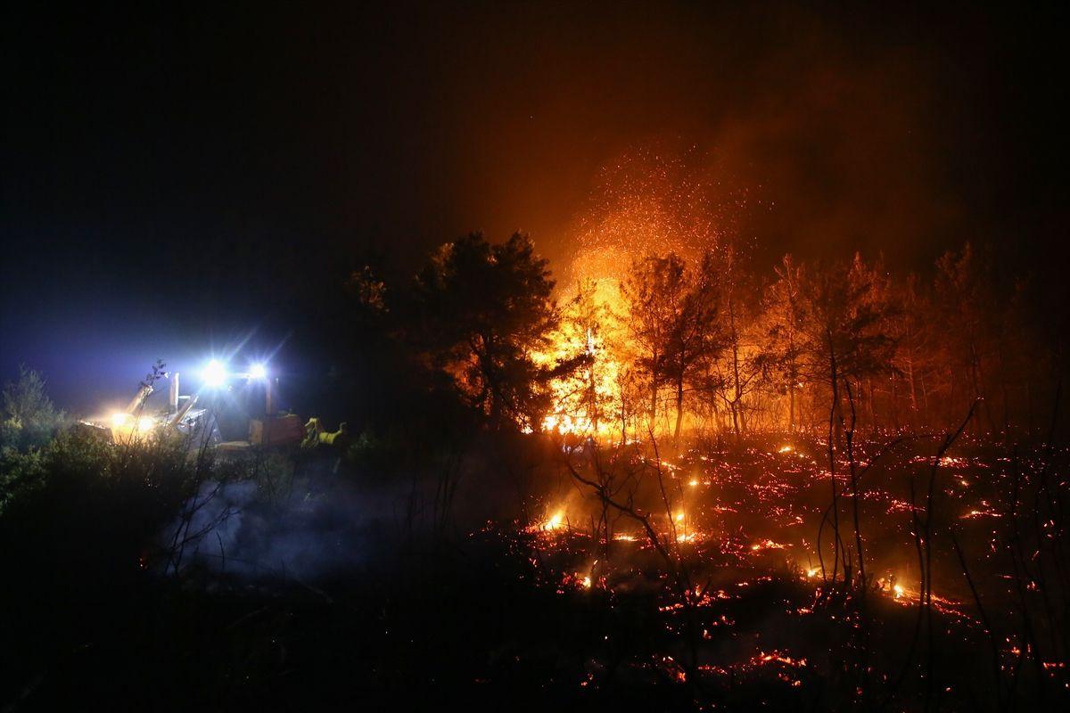 Antalya'nın Manavgat ilçesinde orman yangını - Sayfa 1