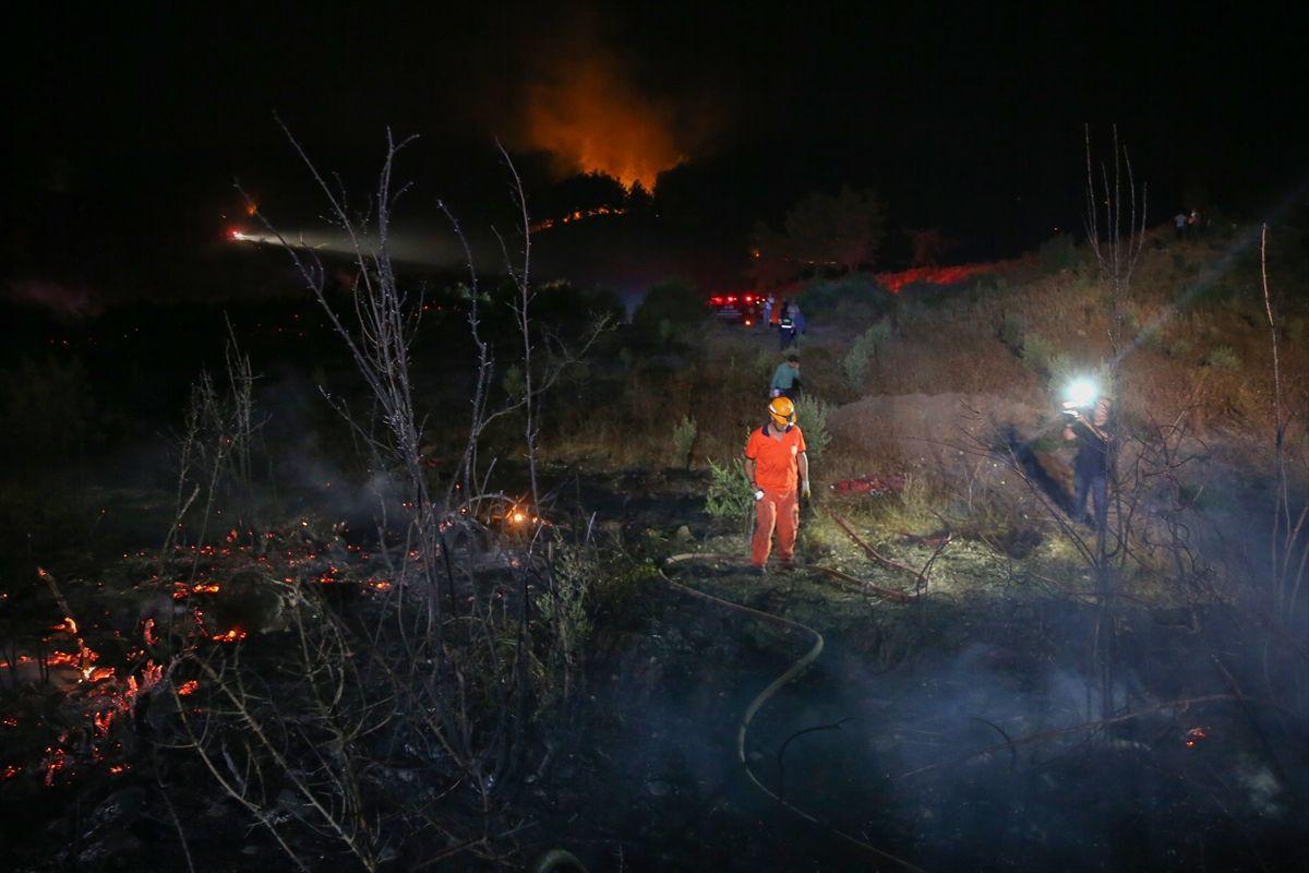 Antalya'nın Manavgat ilçesinde orman yangını - Sayfa 2