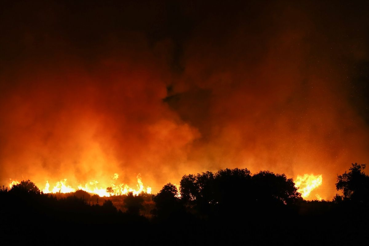 Antalya'nın Manavgat ilçesinde orman yangını - Sayfa 10