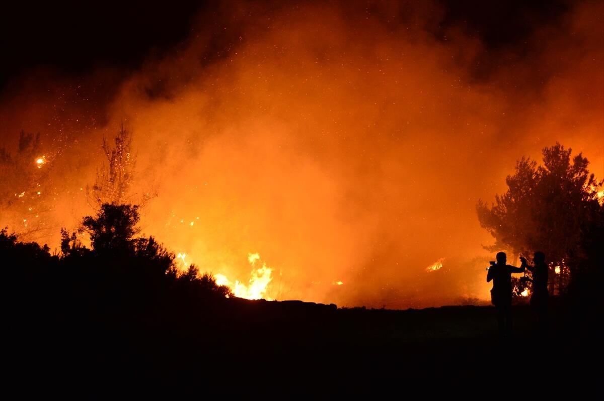 Gelibolu Yarımadası'nda yangın - Sayfa 3