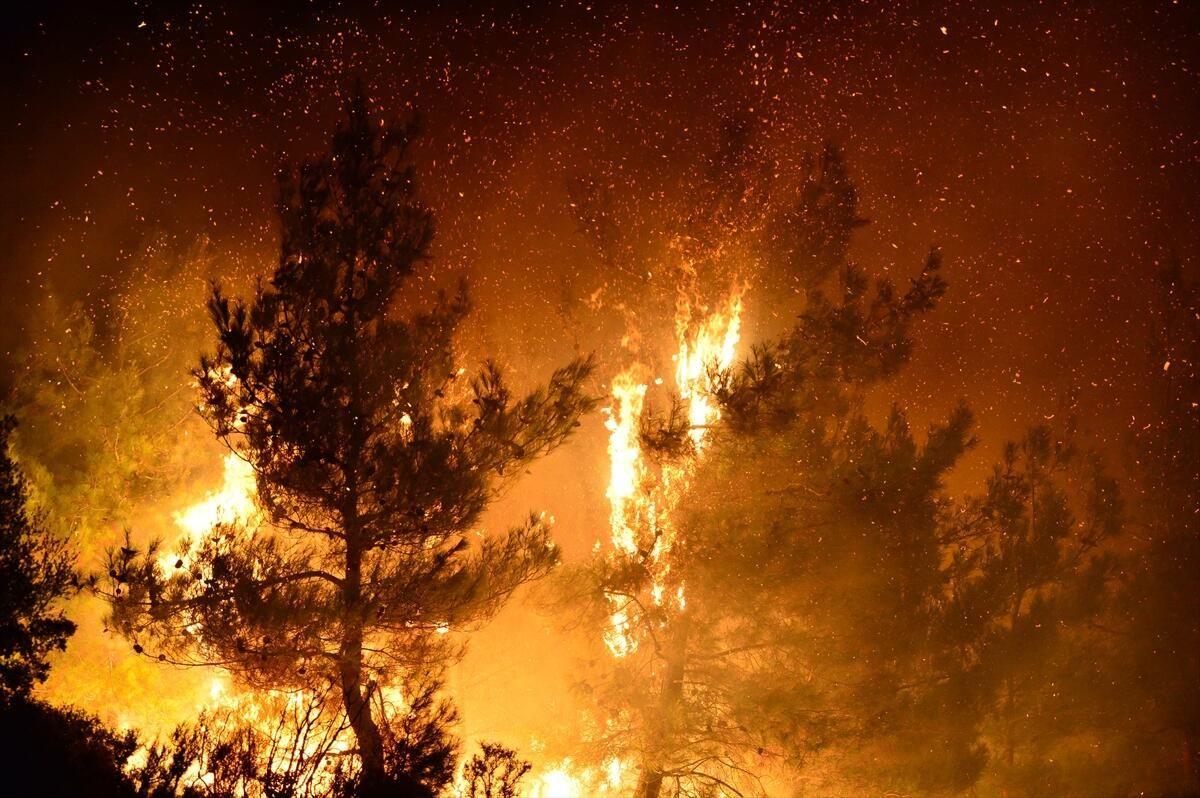 Gelibolu Yarımadası'nda yangın - Sayfa 4