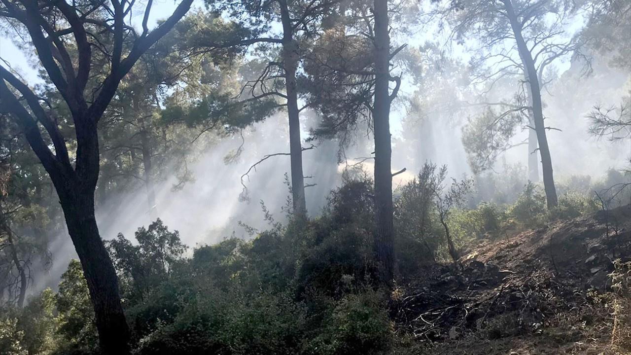 Marmaris'te şüpheli orman yangını!