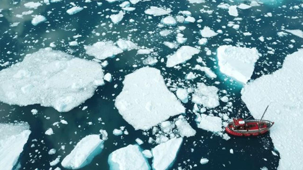 Grönland'dan kopan buzul can aldı