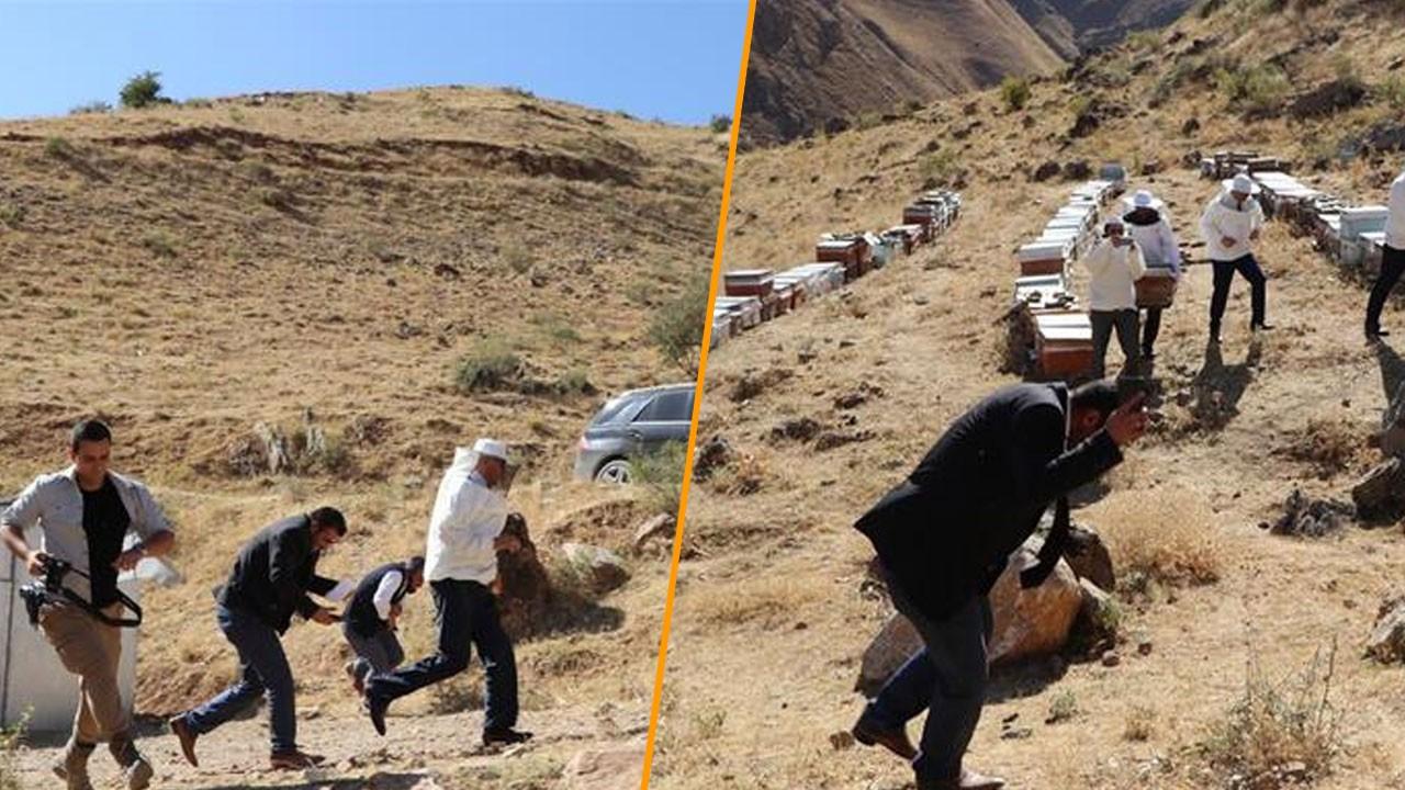 Verimli bal sezonu için şükür duasında arı saldırısına uğradılar