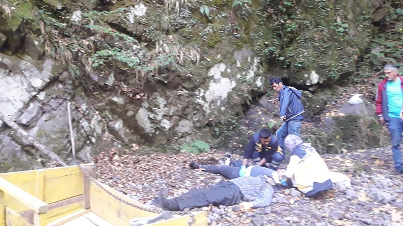 Kestane toplarken uçuruma yuvarlandılar: 1 ölü