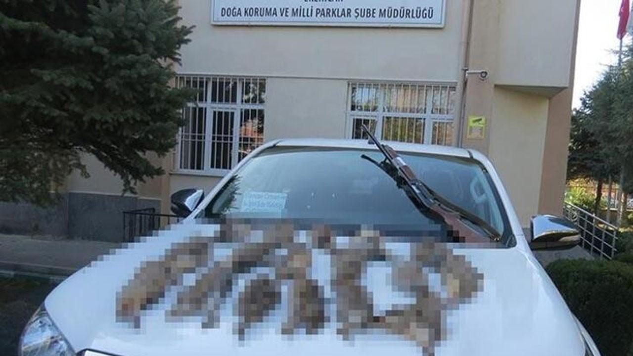 Usulsüz keklik avlayan 10 kişiye 17 bin 839 lira ceza kesildi