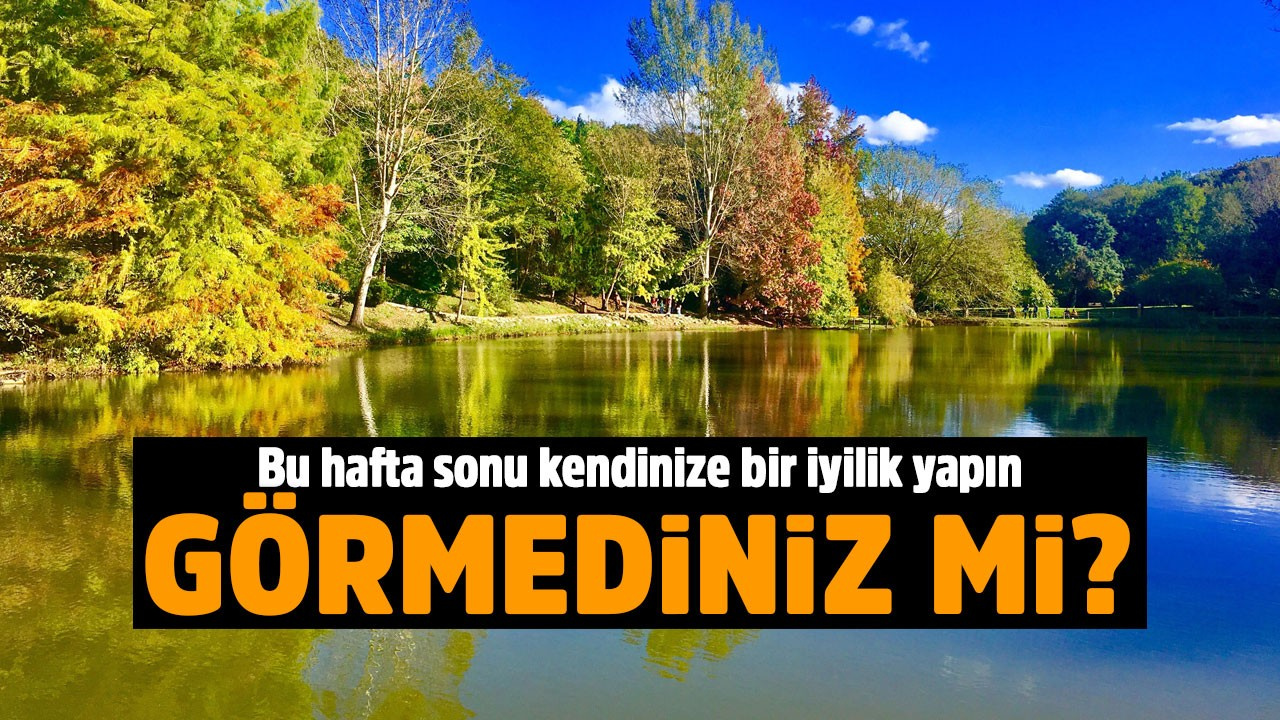 Bu cennet İstanbul'da!