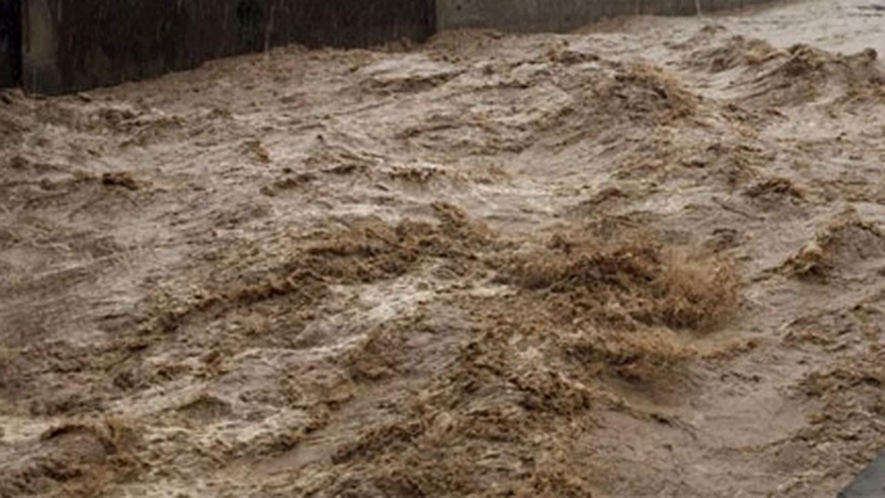 Sel ve heyelanlarda 194 kişi öldü