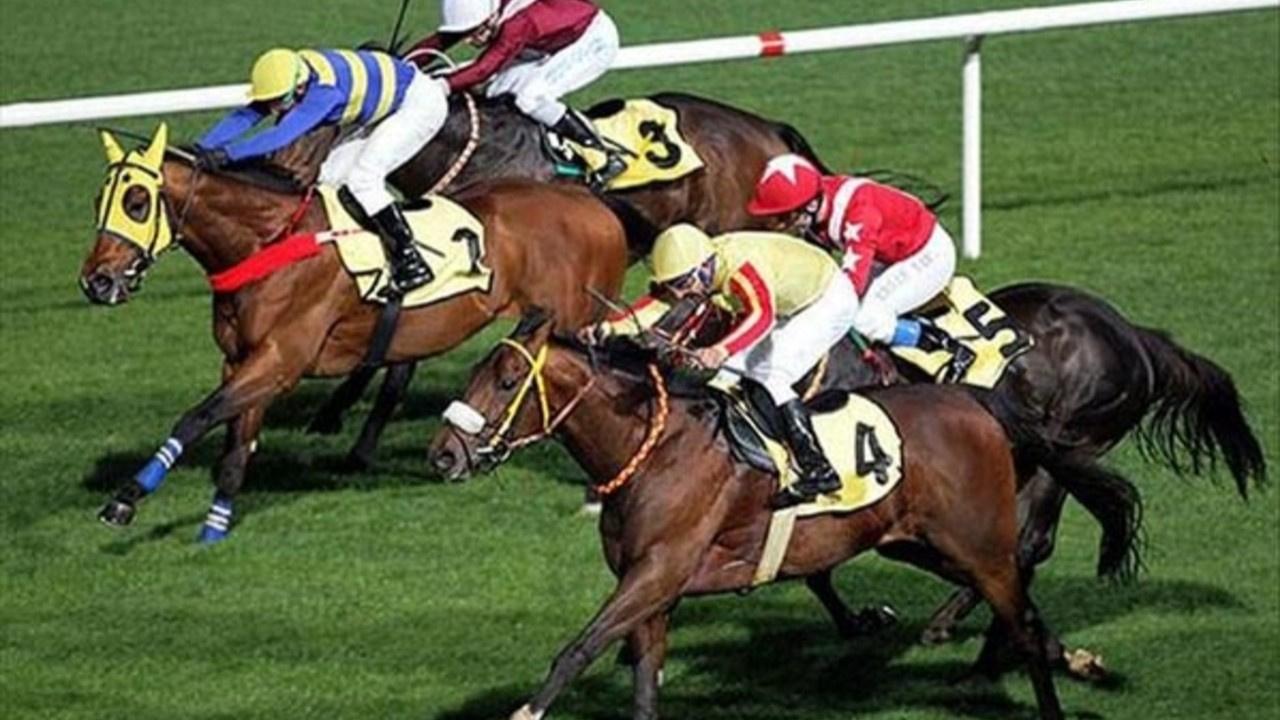 Veliefendi'de at yarışı heyecanı