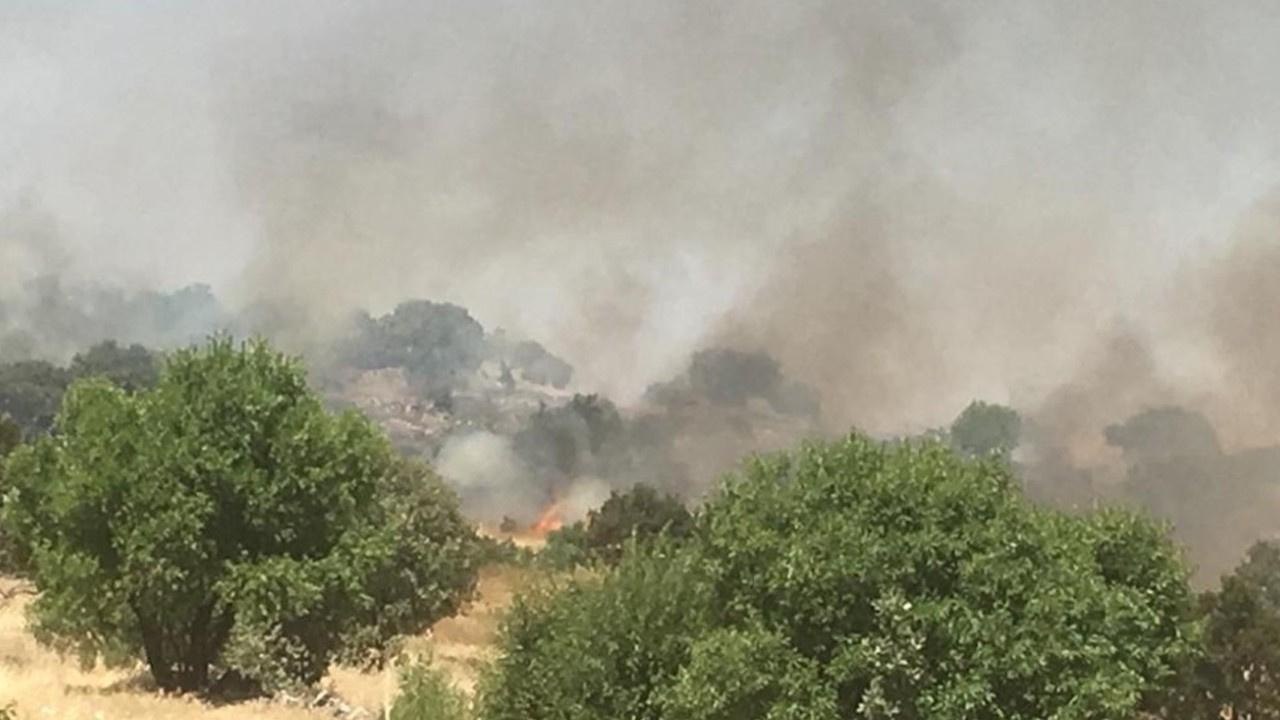 Midyat'ta orman yangını!