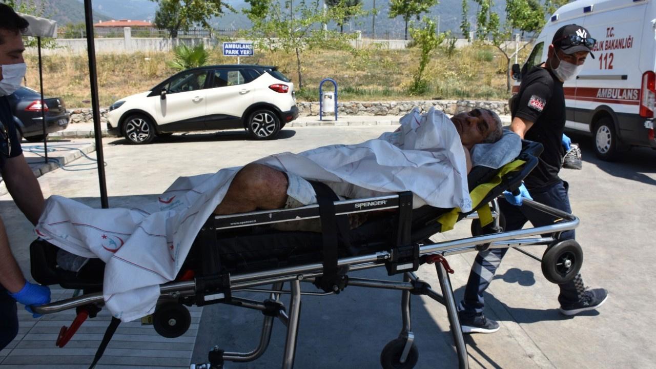 Elektrik sayacı okuyan görevliye pitbull saldırısı