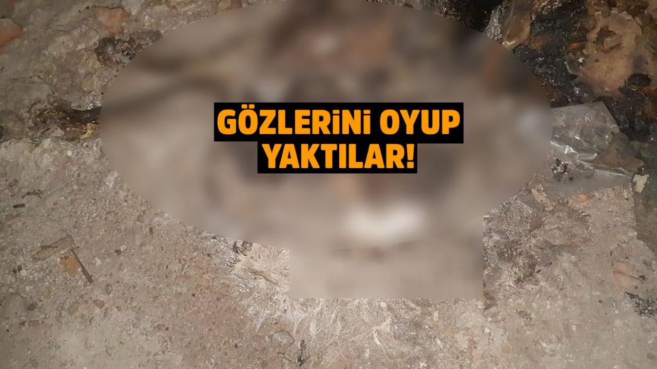 Bursa'da boş inşaatta vahşet!