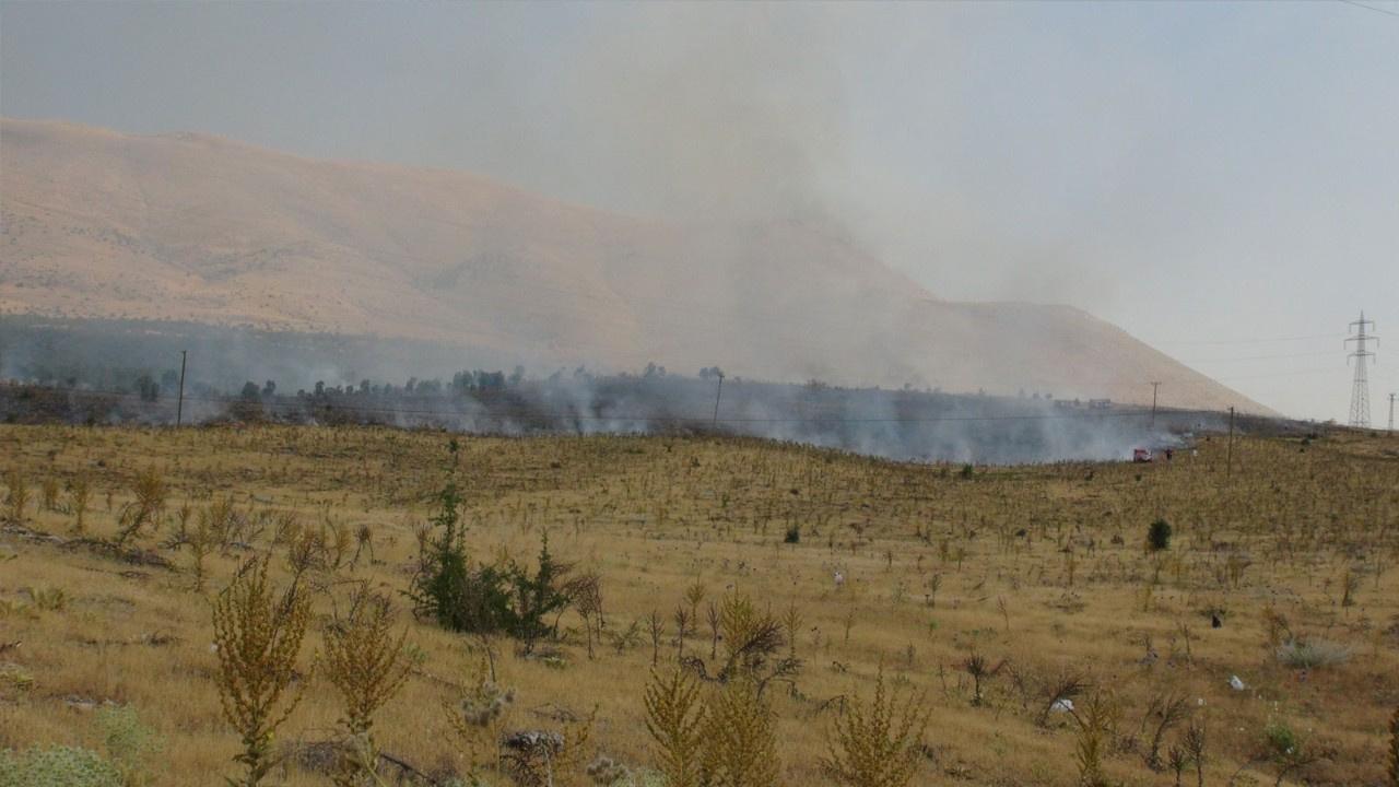 Malatya'da orman yangını