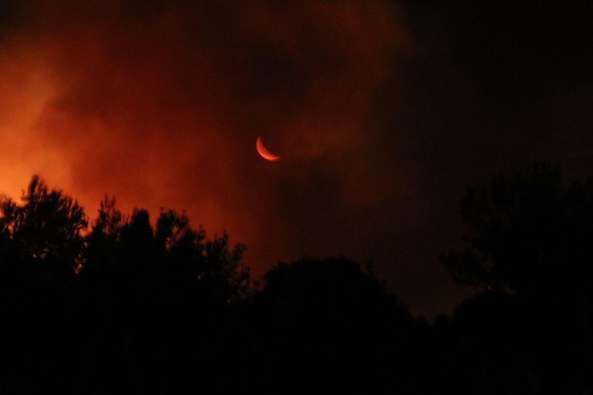 Çeşme'de korkutan yangın!.. 4 site boşaltıldı! - Sayfa 2