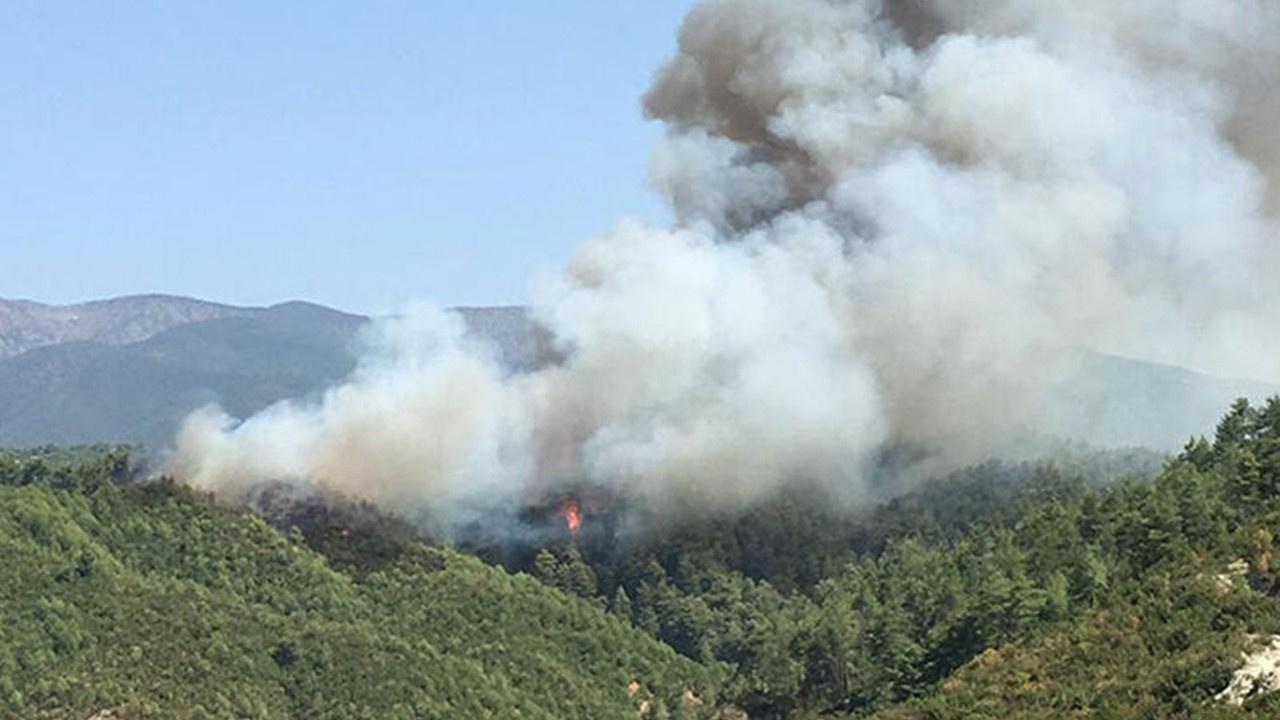Ormanlık alanda 8 noktayı ateşe vermişti!