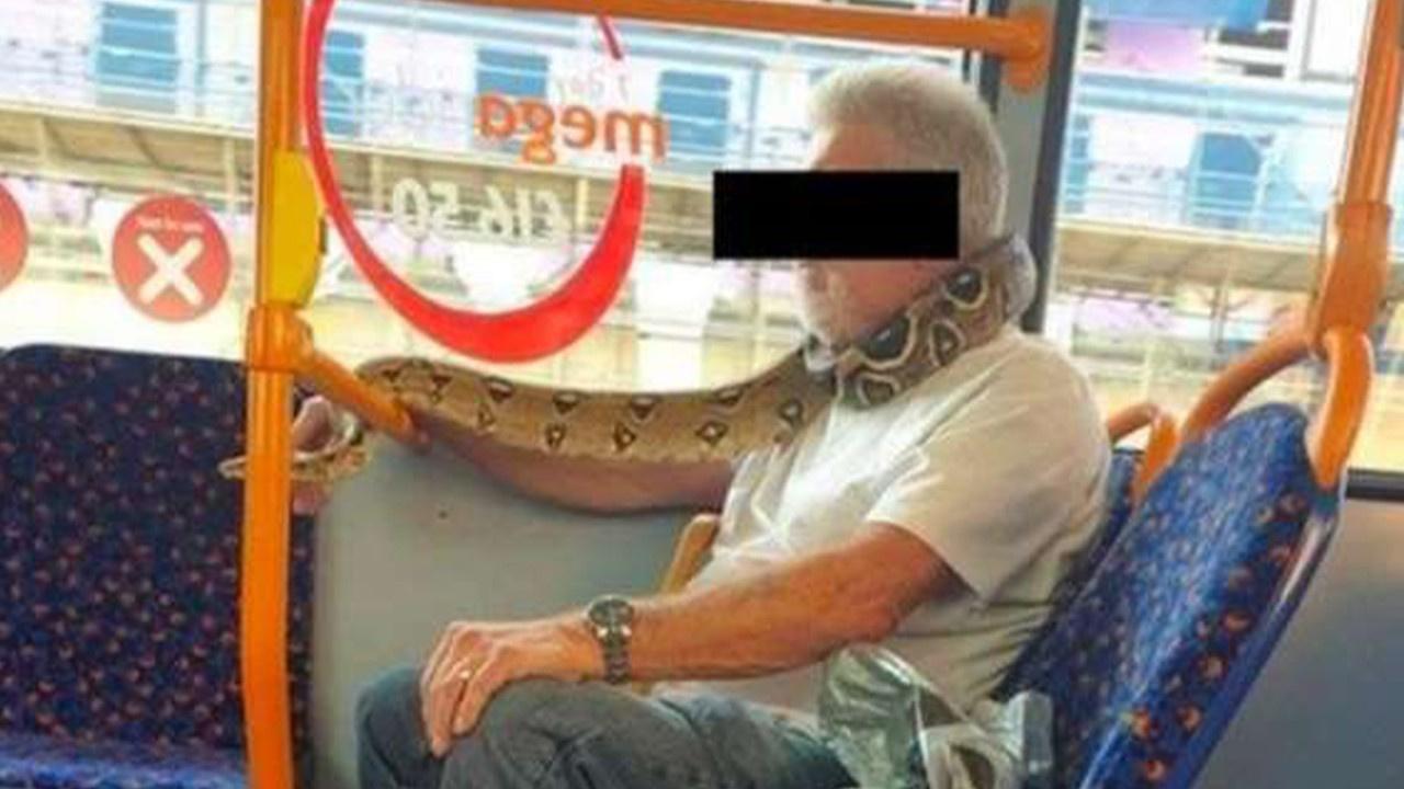 Yılanı boynuna sarıp otobüse bindi!