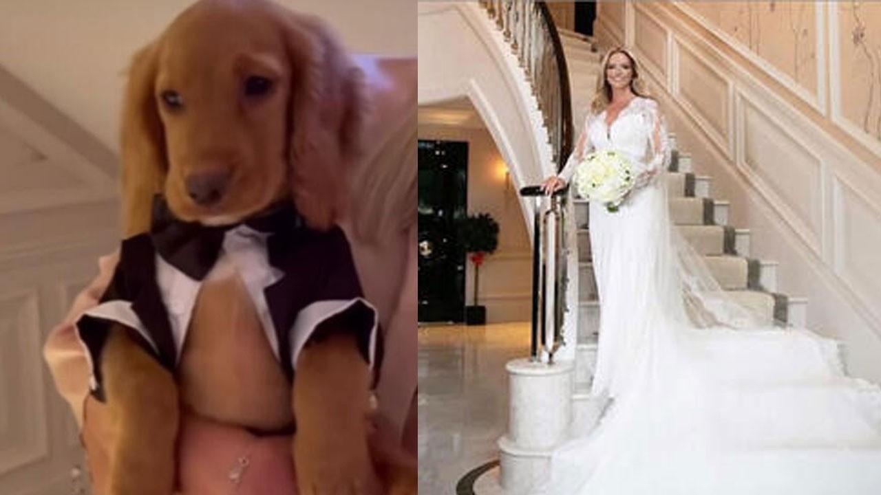 Düğününde köpeğine bile smokin giydirdi