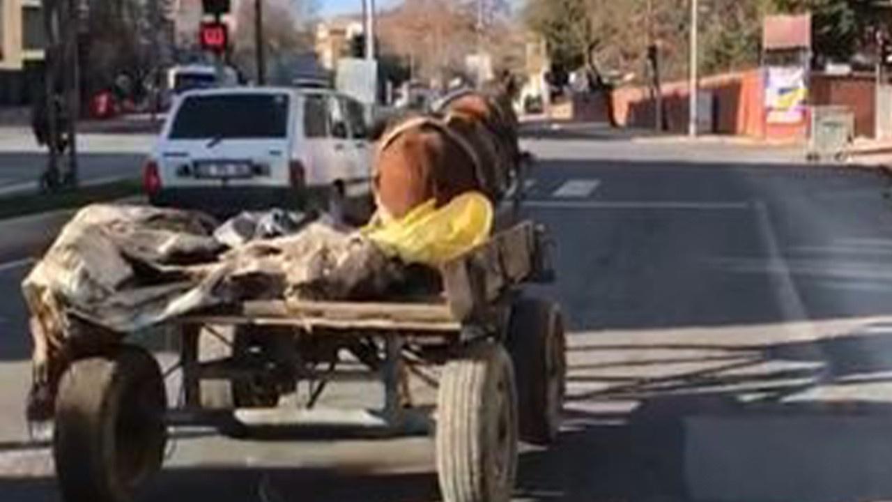 Sahibinden kaçan başıboş at trafikte tehlike saçtı