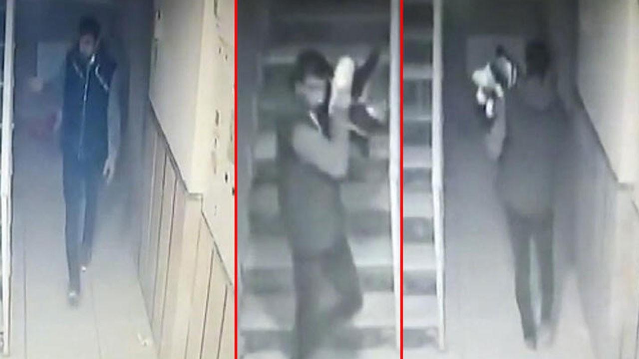 İstanbul'da şok görüntü! 24 daireyi soydu