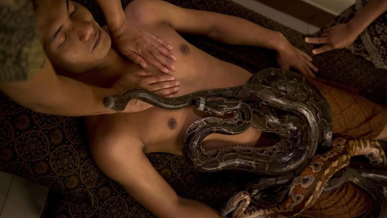 Mısır'da yılanlı masaj ilgi görüyor