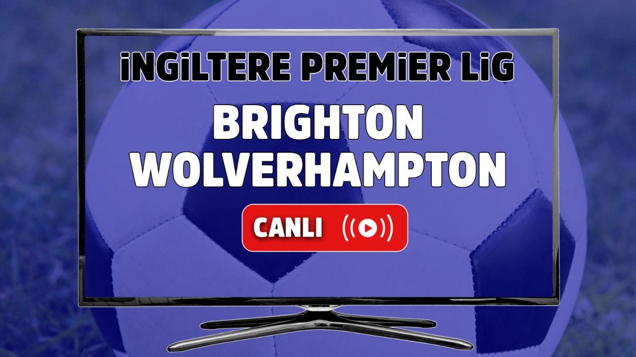 Brighton – Wolverhampton Maçı Canlı