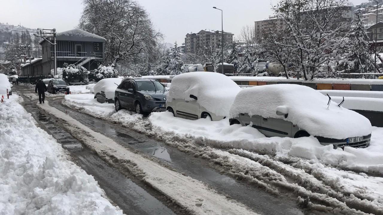 Yoğun kar ağaçları devirdi, 20 otomobil hasarlı