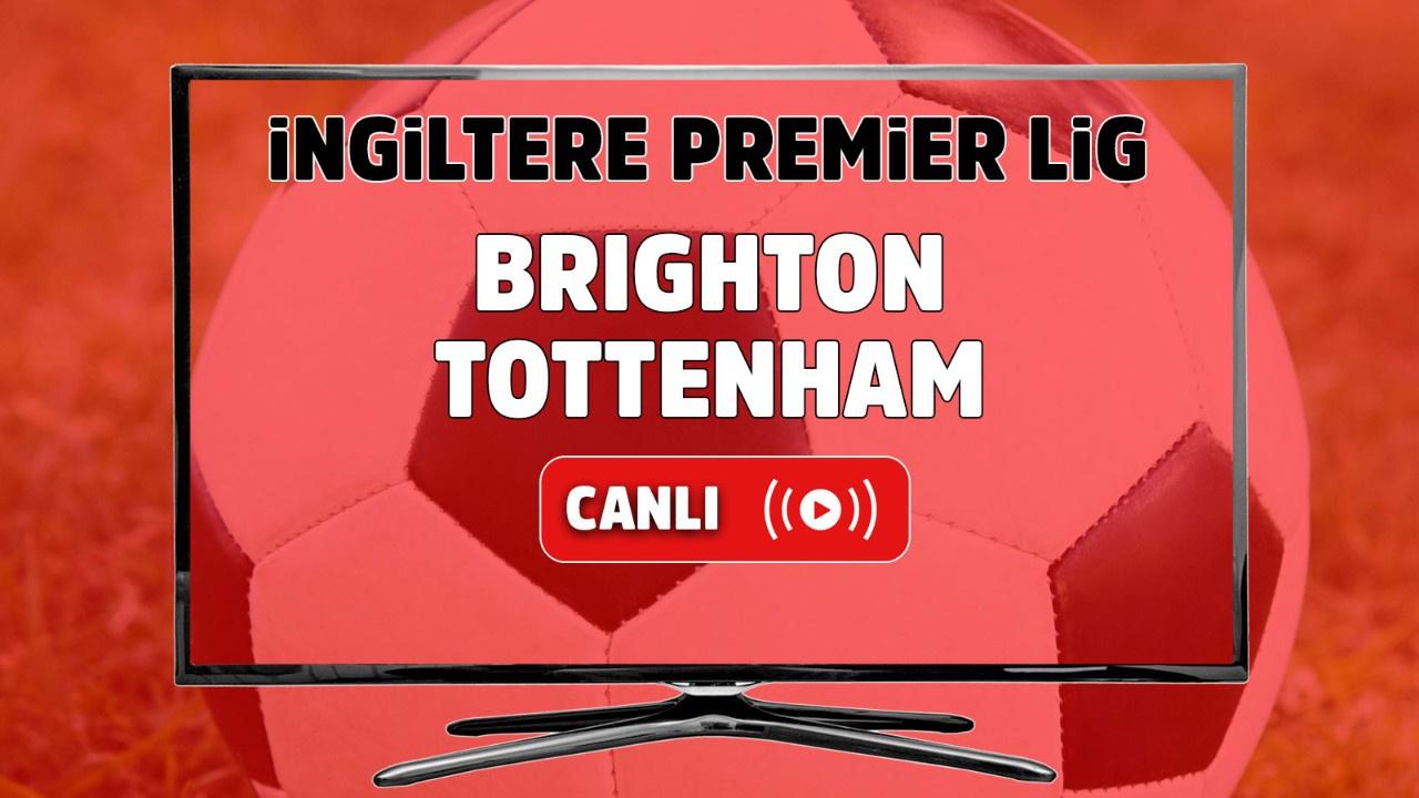 Brighton – Tottenham Maçı Canlı