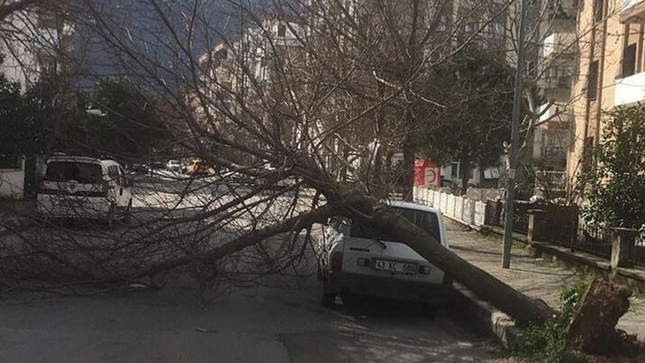 Fırtına İzmir'i vurdu! Ortalık savaş alanı