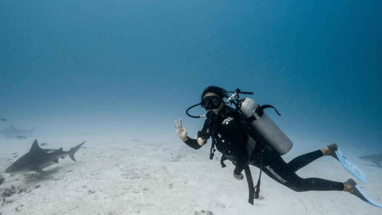 Eda Taşpınar köpek balıklarıyla yüzdü