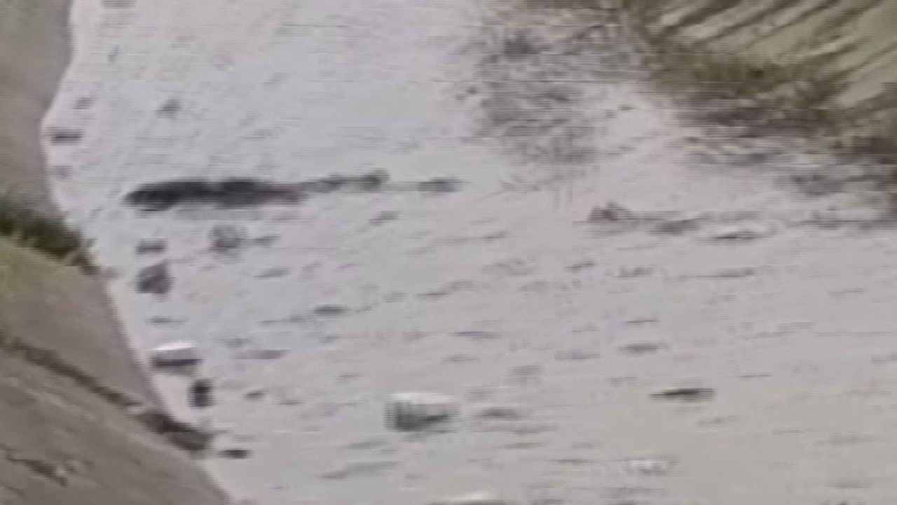 Yer: Mersin... Su kanalında ceset bulundu!