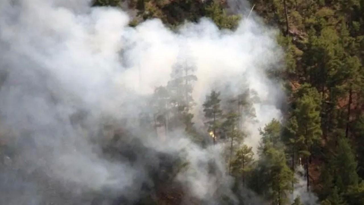 İki farklı noktada orman yangını çıktı