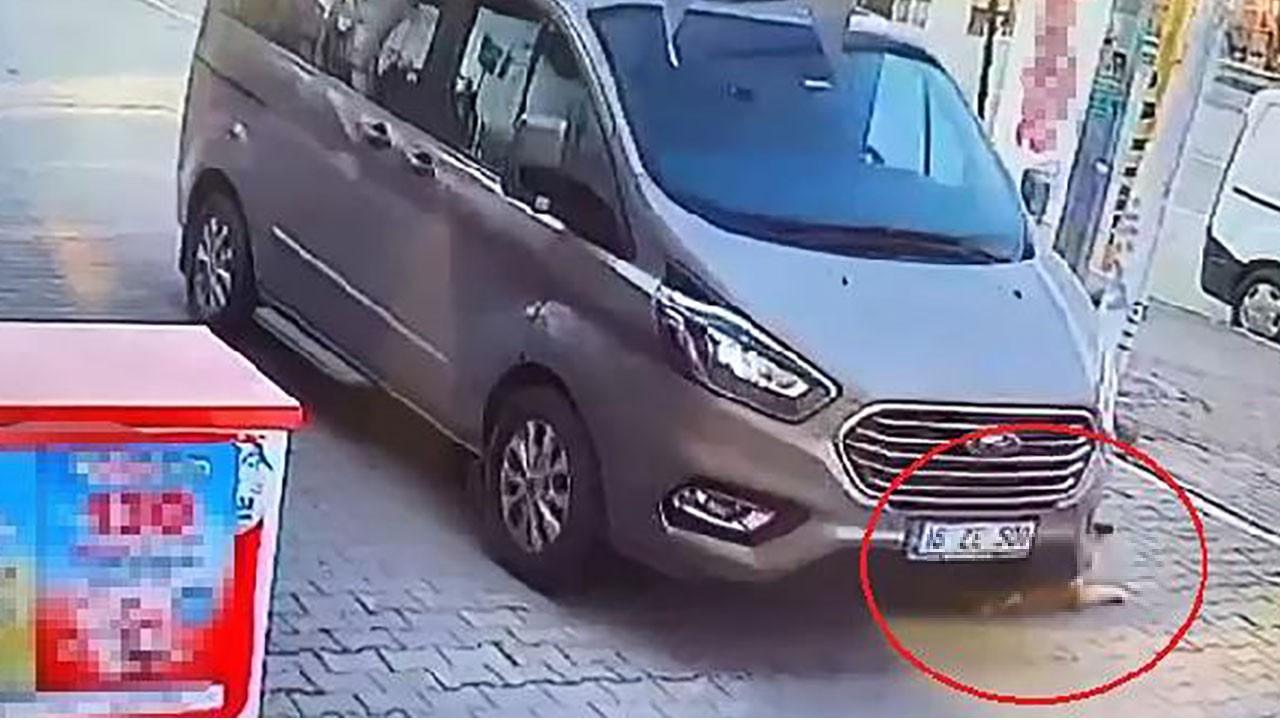 Aracıyla köpeği ezip kaçtı